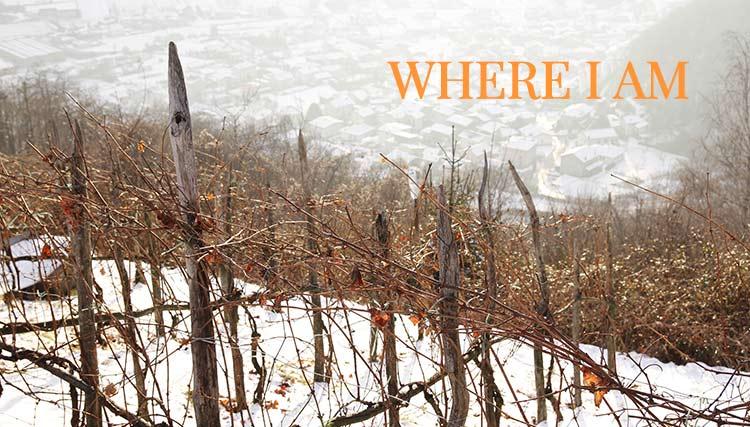 Where is Il dosso Maroggia- B&B Valtellina
